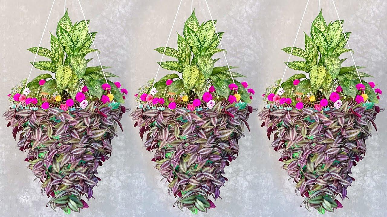 Download Indoor Planter Decor Ideas, Indoor Hanging planters to Decorate Your Home