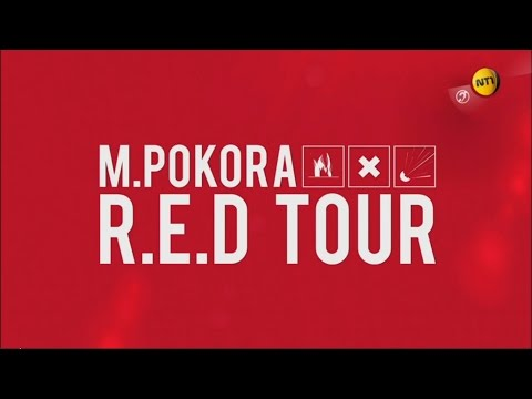 REPLAY - M Pokora, le R.E.D Tour (NT1, 26/10/2016)