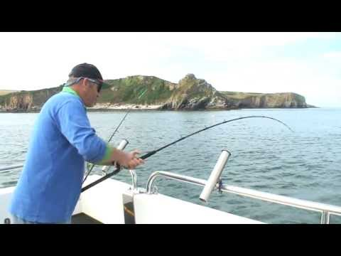 Smoothhound Fishing With Dave Lewis