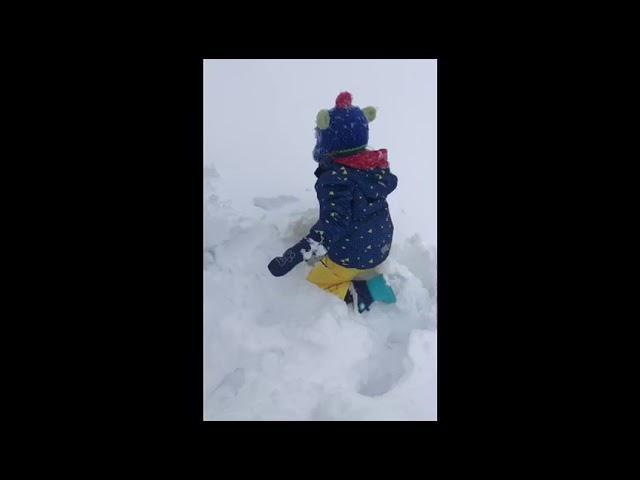¿Por qué hay que dejarles jugar en la nieve?