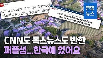 """외신도 반했다…""""원더풀! 신안 퍼플섬"""" / 연합뉴스 (Yonhapnews)"""