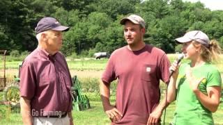 Let's Go Farming: CSA - Tangerini's Spring Street Farm, Millis, MA