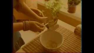 Ларингит? Лечение ларингита народными средствами по методу доктора Скачко, Киев: 067-9924062