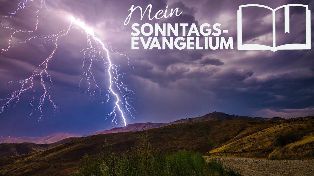 Mein Sonntagsevangelium: Mut durch Gemeinschaft