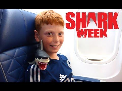 Shark Week!  Shark on a Plane!