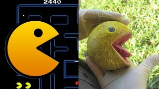 Pacman Characters In Real Life