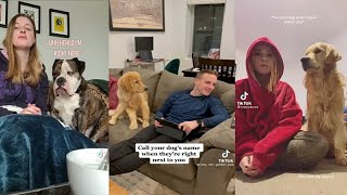 Call Your Dog's Name When They're Right Next To You TikTok Compilation