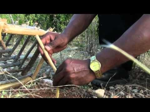 How to Hunt In Anguilla
