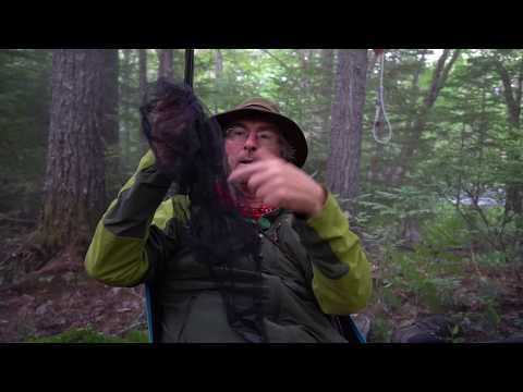 Dealing with Mosquitoes, Black Flies and Ticks