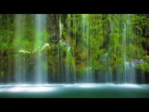 Experience - Ludovico Einaudi - Arranged for String Quartet