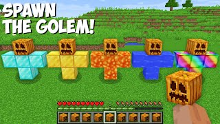 Which GOLEM TO SPAWN ? DIAMOND GOLEM or EMERALD or GOLD or LAVA or WATER GOLEM in Minecraft !