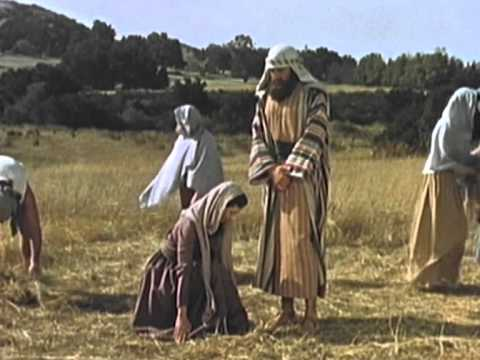 The Holy Bible Ruth A Faithful Woman Youtube