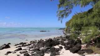 1h Plage Paradisiaque, Lagon Bleu, Filaos   Musique Zen & Relaxante   Relax