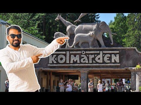 kolmården wildlife park Sweden, Largest zoo in Scandinavia. Travel Sweden