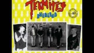 The Termites-Rockin
