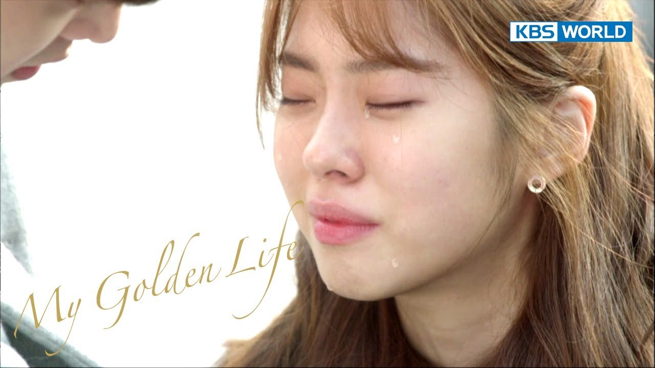My Golden Life | 황금빛 내인생 – Ep 29 [SUB : ENG,CHN,IND /2017 12 16]