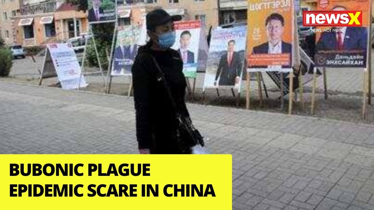 Bubonic Plague Warning In China's Inner Mongolia, Here Is What It ...