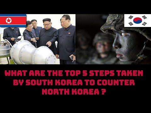 WHAT ARE THE TOP 5 STEPS TAKEN BY SOUTH KOREA TO COUNTER NORTH KOREA ?