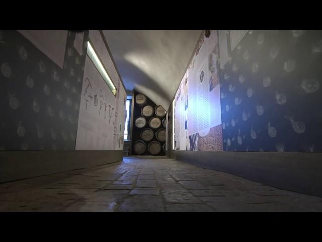 Museo del Vino – Sala Baganza – Parma