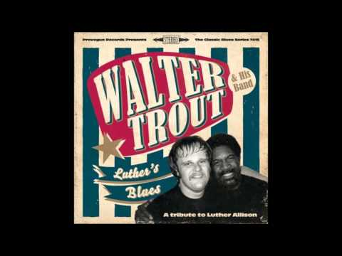 Walter Trout  Cherry Red Wine