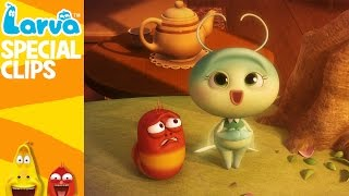 official heart warming - 1 min - fun clips from animation larva