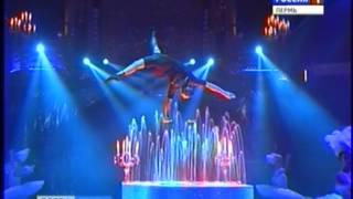видео В Нижегородском цирке продолжается программа