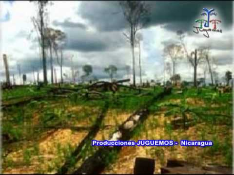 Pueblo Verde-Mario montenegro-01.wmv