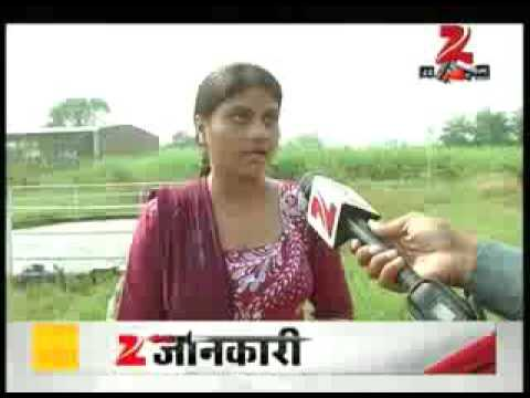 ZEE News DNA-  Benefits of cow dung and cow urine Gomutra