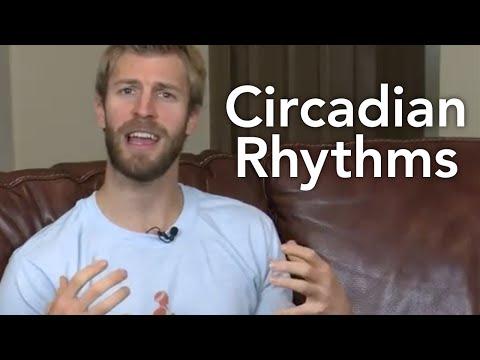 Circadian Rhythms-Transformation TV-Episode #024
