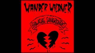 Wander Wildner -  Eu Tenho Uma Camiseta Escrita Eu Te Amo