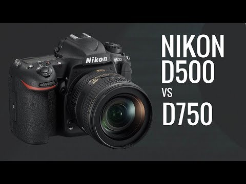 Nikon D500 vs Nikon D750 for LOW Light