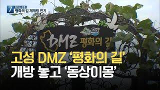 [여기는 강릉] 고성 DMZ '평화의 길' 개방 놓고 …