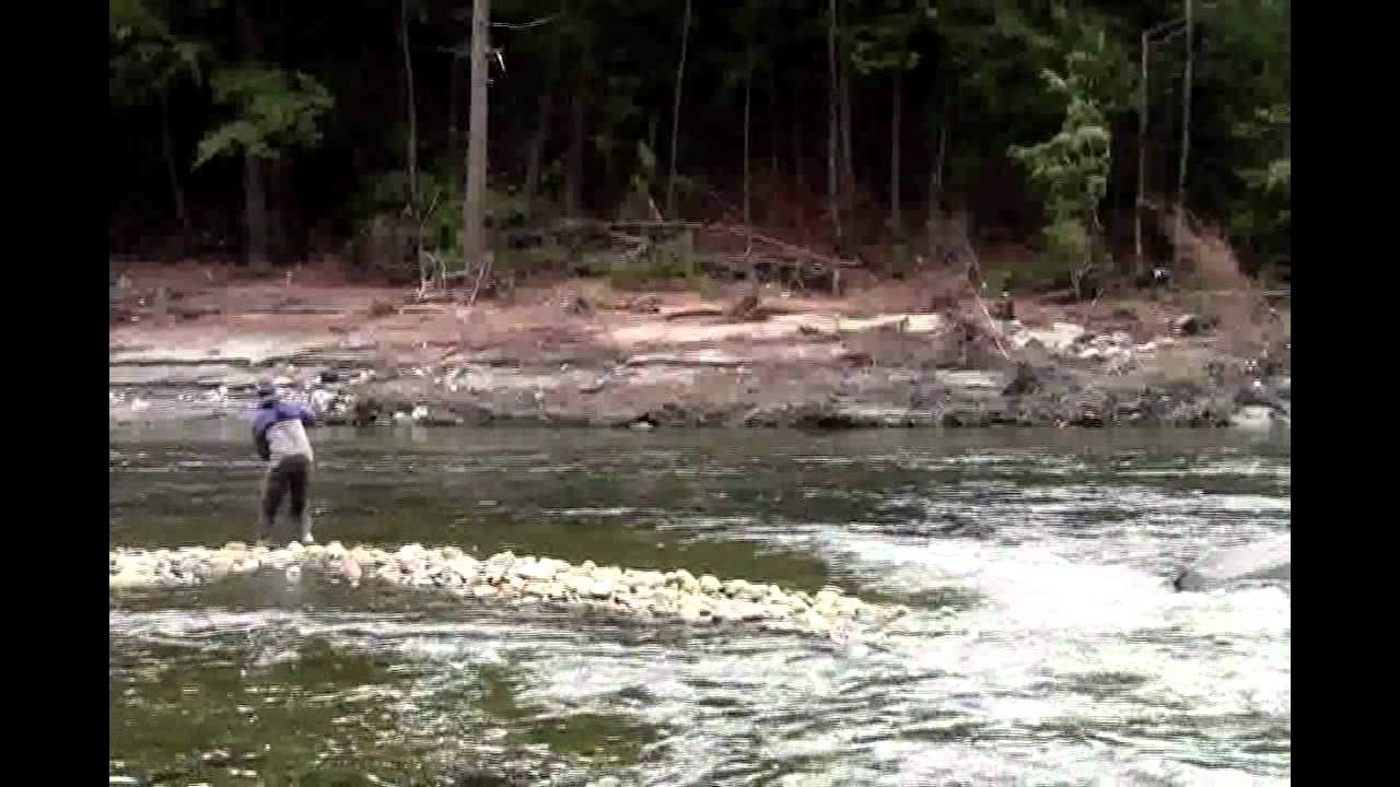 Deerfield river uber rainbow trout youtube for Deerfield river fly fishing
