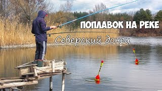 Ловля на поплавок весной! РЫБАЛКА на ПОПЛАВОЧНУЮ УДОЧКУ на СЕВЕРСКОМ ДОНЦЕ