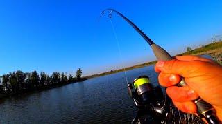 ЭТО ЧЕ ТАКОЕ рыбалка осенью 2019