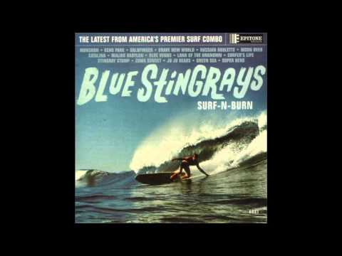 Blue Stringrays - Brave New World