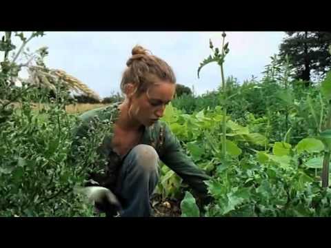 Trailer do filme Guibord sen va-t-en guerre