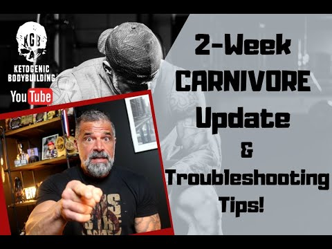 carnivore-diet-2-week-update!!-how-i'm-doing-and-troubleshooting-tips!