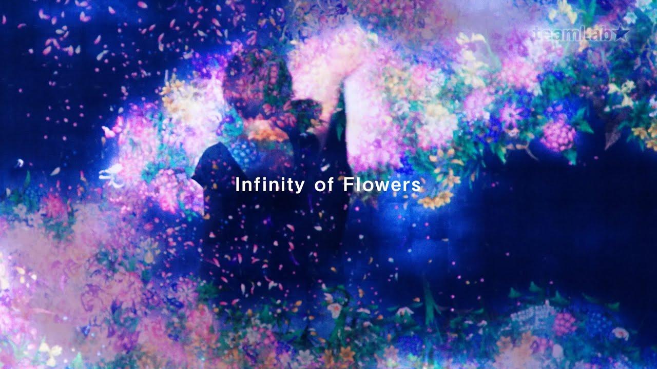 infinity of flowers youtube