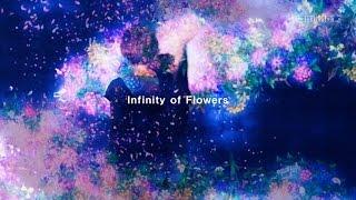 infinity of flowers