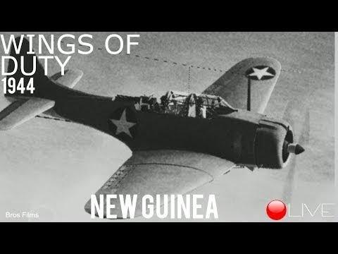 Wings of Duty