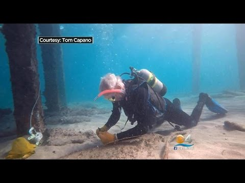 exclusive:-canadian-man's-wedding-ring-recovered-by-lauderdale-cleanup-diver
