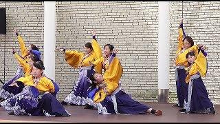いずみよさこい祭り2回目『心蕾万笑 (南中ソーラン)』アムゼ広場