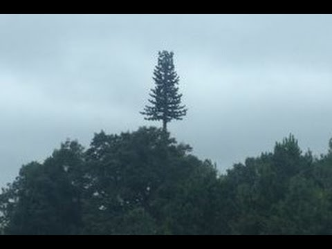 Mystery Surrounds Unexplained Cellphone Tower In Nc Youtube