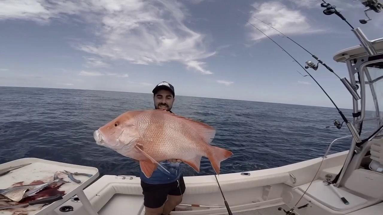 1770 | BATS FISHING