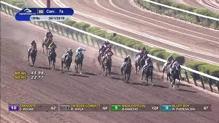 Vidéo de la course PMU PREMIO FAENERO