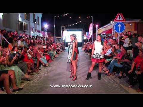 art fair model show