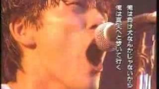 大阪球場 尾崎豊さんらしい尾崎豊さん たぶん全盛期です。