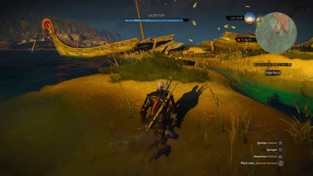 Witcher 3 Leveln
