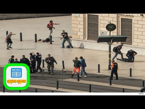 French authorities drop the ball in marseille slaughter
